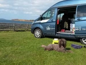Hector the dog friendly campervan