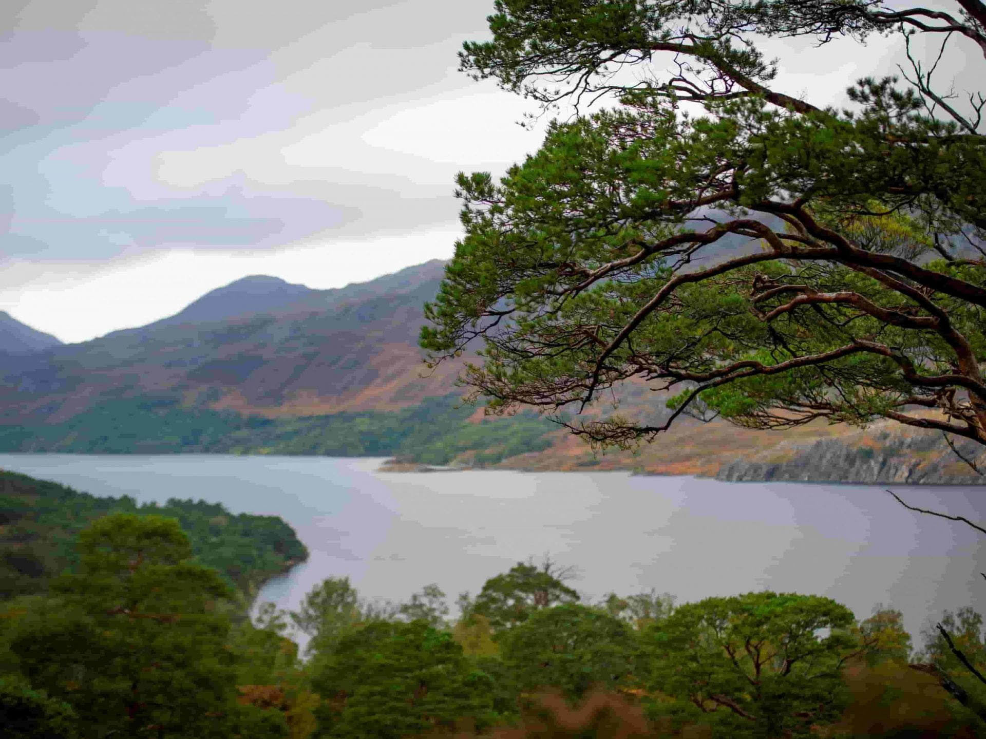 Loch view scaled